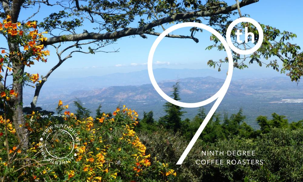 9th Degree coffee design 6